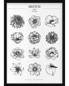 POSTER - Sketch av Blommor