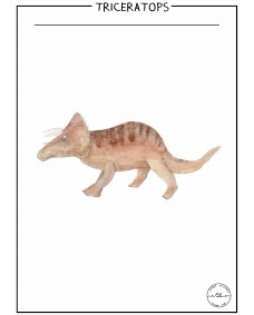 POSTER - TRICERATOPS