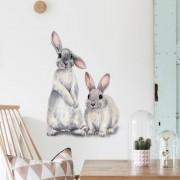 Väggdekor -  Kaniner