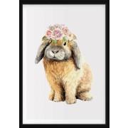 POSTER - Kanin med blommor på huvudet